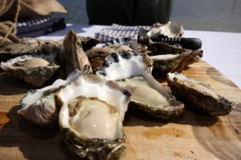 Sample fresh oysters