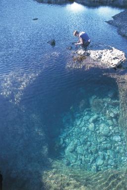 Crystal clear rock pools
