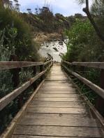 Stairs to hidden Josh's Beach