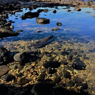 Broulee Island rockpool