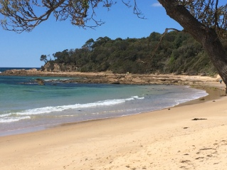 Shelley Beach South Moruya